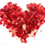 """Ayat-ayat Bunga Cinta"""""""