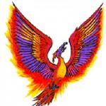 Kisah Cinta Burung Phoenix